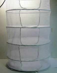 Malla secadora para el secado de los cogollos.