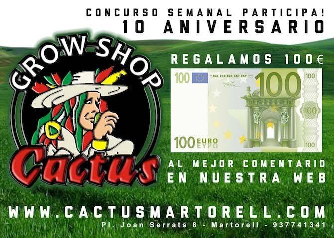 concurso_cactus_mondays_guia_de_cultivo