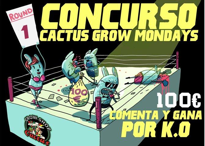Concurso_cactus_grow_1