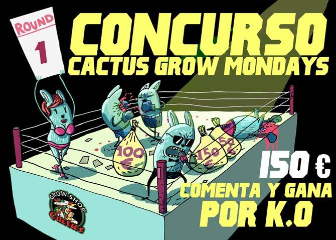Concurso-Cactus-Grow-Mondays-mes