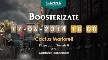 boosterizate Cactus Martorell