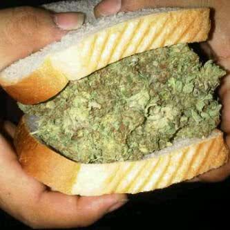 cannabis_curiosidades
