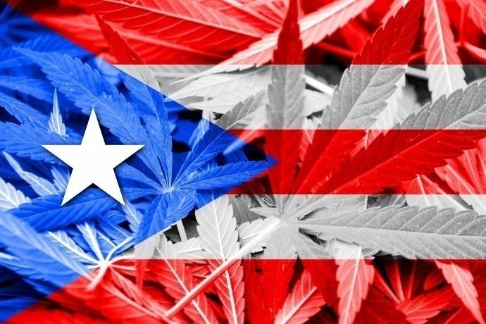 puerto_rico_marihuana