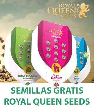 Promoción Royal Queen Seeds