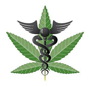cannabis_thérapeutique
