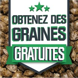 Graines Gratuites Grow Shop