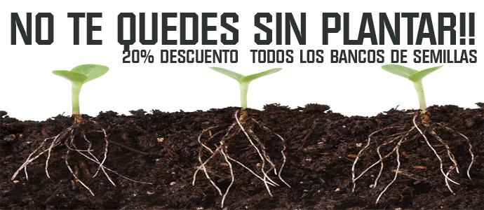 Todos los bancos de semillas 20% dto.