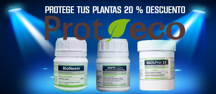 Protege tus plantas con 20% descuento