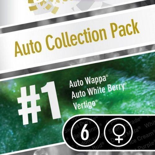 Auto Collection Pack 1 autoflorecientes