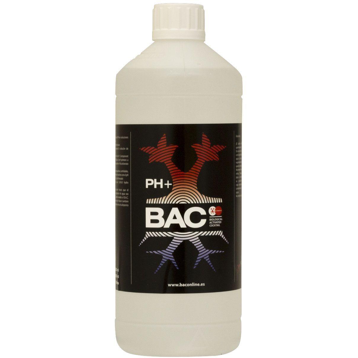 Ph+ Bac