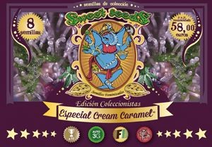Coleccionista Especial Cream Caramel