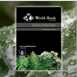 Mix Sativa Collection Regulares