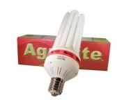 AGROLITE CFL FLORACION 105W