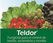 TELDOR WG 50% Fenhexamida