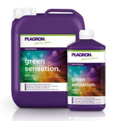 Engrais Green Sensation Plagron