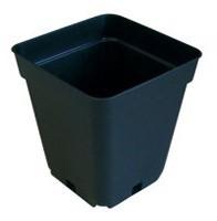 Pot Noir 0.70 Litres