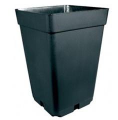 Pot Noir 5.5 Litre