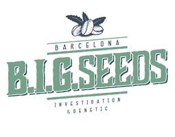 Big Seeds