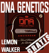 Lemon Walker Gratis