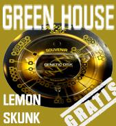 Lemon Skunk Gratis