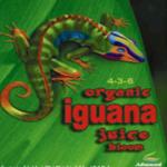 Iguana Bloom