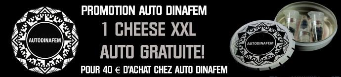 Promotion Auto Dinafem