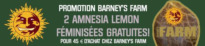 Semillas Barney's Farm Gratis