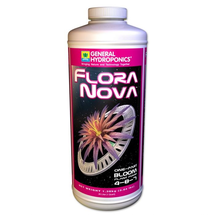 Floranova Bloom Ghe