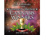CANNABIS WINNERS #1 Delicious Seeds