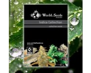 INDICA PURE ORIGIN COLLECTION World Of Seeds