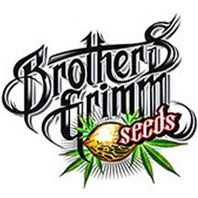 Semillas Brothers Grimm Seeds